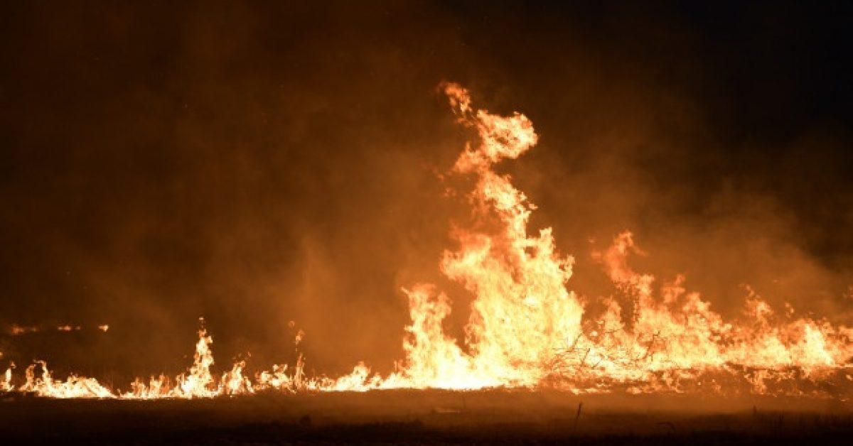 fire-field-night_35063-702